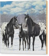 Black Appaloosa Horses In Winter Pasture Wood Print