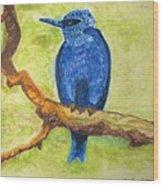 Black As Blue Bird Wood Print
