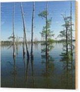 Black Bayou Lake 2 Wood Print