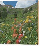 Black Bear Pass Landscape Wood Print
