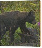 Black Bear-signed-#6549 Wood Print