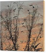 Black Birds At Sundown Wood Print
