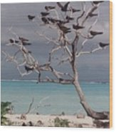 Black Birds Wood Print
