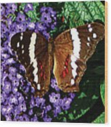 Black Butterfly On Heliotrope Wood Print