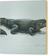Black Caiman Wood Print