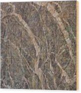 Black Canyon Geology Wood Print