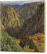 Black Canyon Of The Gunnison - Colorful Colorado - Landscape Wood Print
