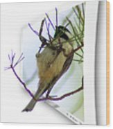 Black-capped Chick-a-dee Wood Print