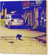 Black Cat Crosses Path Wood Print