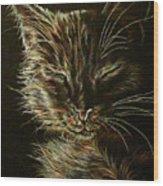 Black Cat Drawing Wood Print