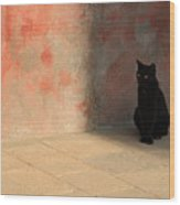 Black Cat On Burano Wood Print