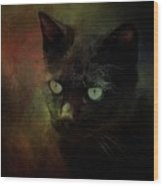 Black Cat Portrait Wood Print