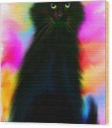 Black Cat Rainbow Sky Wood Print