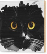 Black Cat, Yellow Eyes Wood Print
