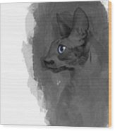Black Cornish Rex No 04 Wood Print