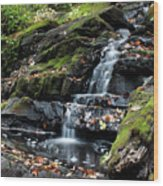 Black Creek Falls In Autumn, 2016 Wood Print