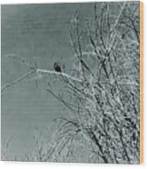 Black Crow White Snow Wood Print
