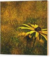 Black-eyed Susan And Granite Wood Print