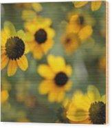 Black Eyed Susan Floral Wood Print