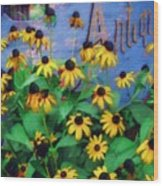 Black-eyed Susans At The Bag Factory Wood Print
