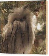 Black Feather Owl Wood Print