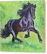 Black Friesian Horse Wood Print