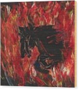 Black Fury Wood Print