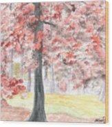 Black Gum Grove Wood Print