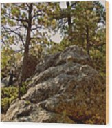 Black Hills Boulders Wood Print