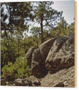 Black Hills II Wood Print
