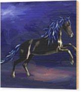 Black Horse At Night Wood Print