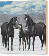 Black Horses In Winter Pasture Wood Print