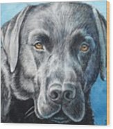 Black Lab Wood Print
