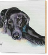 Black Lab Stretching out Wood Print