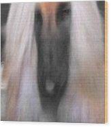 Black Masked Afghan No 10 Wood Print