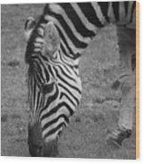 Black N White Stripes Wood Print