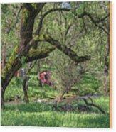 Black Oak And Creek Wood Print