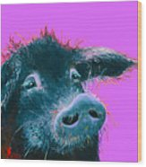 Black Pig Painting On Purple Wood Print