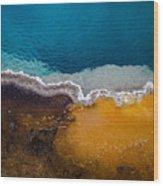 Black Pool Tricolor Wood Print