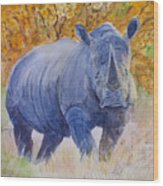 Black Rhino Is The Evening Sun Wood Print