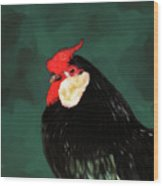 Black Rooster Number Two Wood Print