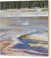 Black Sand Basin Geysers In Yellowstone National Park Wood Print