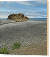 Black Sand Beach On The Lost Coast Wood Print