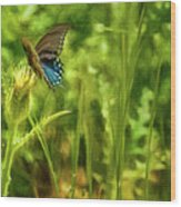 Black Swallowtail No. 2 Painterly Wood Print