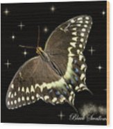 Black Swallowtail On Black Wood Print