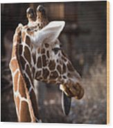 Black Tongue Of The Giraffe Wood Print