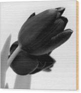 Black Tulips Wood Print