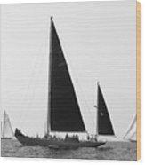 Black Wings In Classic Sea Race Wood Print