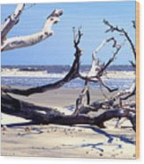 Blackbeard Island Beach Wood Print by Thomas R Fletcher
