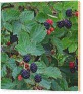 Blackberries 1 Wood Print